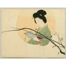 Kajita Hanko: Plum Blossoms - Artelino