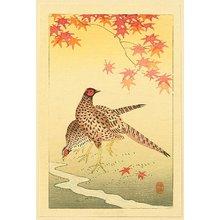 小原古邨: Pheasants - Artelino