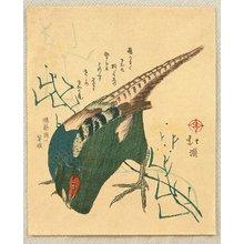 魚屋北渓: Pheasant - Artelino