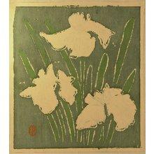 Tetsu: Ichimokushu Vol. 5 - Iris - Artelino