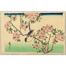 Utagawa Hiroshige III: Bird and Cherry Blossoms - Artelino