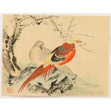 Imao Keinen: Chinese Pheasants - Artelino