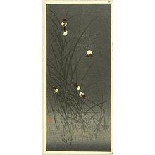 無款: Fireflies in the Early Summer - Artelino