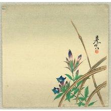 Shibata Zeshin: Bell Flower - Artelino