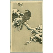 Ohara Koson: Goshawk on a Snow Covered Pine Branch - Artelino