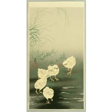Ohara Koson: Baby Chicken and Worm - Artelino