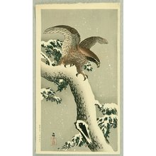 Ohara Koson: Eagle - Artelino