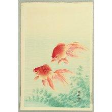 Ohara Koson: Goldfish - Artelino