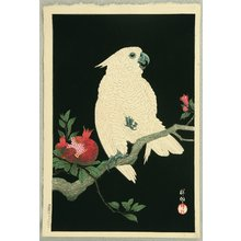 Ohara Koson: Cockatoo on Pomegranate - Artelino