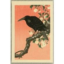 小原古邨: Crow and Cherry Blossoms - Artelino