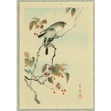 Watanabe Seitei: Birds and Red Berries - Artelino
