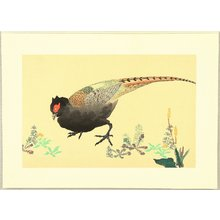 酒井抱一: Pheasant - Artelino