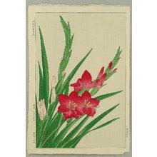 Kawarazaki Shodo: Gladiolus - Artelino