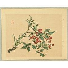 Kono Bairei: Red Berries - Artelino
