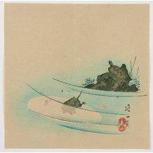 Watanabe Nobukazu: Turtles under the Sun - Artelino