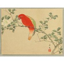無款: Red Parrot and White Flower - Artelino