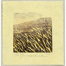 Chesterman Merlyn: Grassland - Artelino