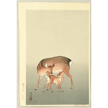 向陽: Deer and Fawn - Artelino