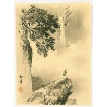 Suzuki Shonen: Waterfall - Artelino