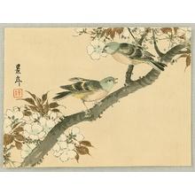 今尾景年: Keinen Kacho Gakan Juni Zu - Green Birds and Cherry - Artelino