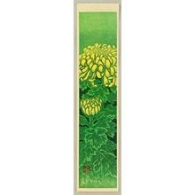Kasamatsu Shiro: Flower of All Seasons - Chrysanthemum - Artelino