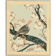 Ono Bakufu: Collection of Japanese Flowers and Birds - Turtle Dove and Cherry - Artelino