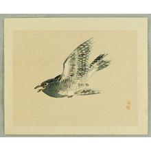 幸野楳嶺: Cuckoo - Artelino