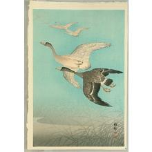 Ohara Koson: Flock of Geese - Artelino