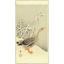 小原古邨: Goose and Reeds - Artelino
