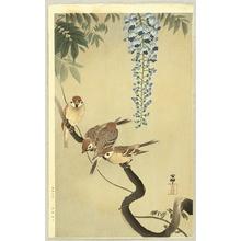 Ohara Koson: Sparrows and Wisteria - Artelino
