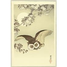 Ohara Koson: Flying Owl - Artelino