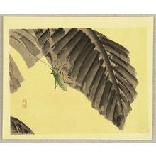 Kono Bairei: Grasshopper - Artelino
