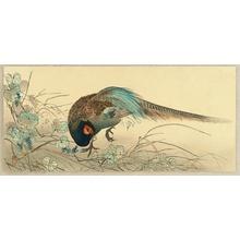 Ito Sozan: Pheasant - Artelino