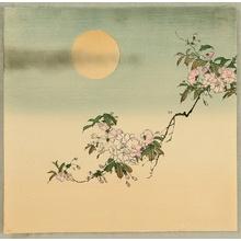 無款: The Moon and Cherry Blossoms - Artelino