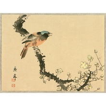 Imao Keinen: Bird and Plum Tree - Artelino