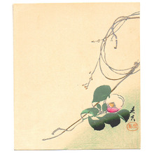 Shibata Zeshin: Camellia - Artelino