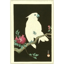 小原古邨: Cockatoo on Pomegranate - Artelino