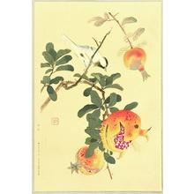 Fukuda Suiko: Pomegranate - Artelino