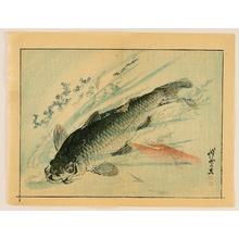 Kawanabe Kyosai: Kyosai Rakuga - Black Carp - Artelino