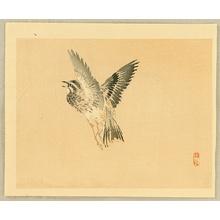 Kono Bairei: Bairei Gadan - Bird - Artelino