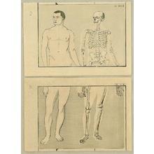 河鍋暁斎: Anatomical diptych - 2 - Artelino