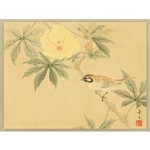 無款: Sparrow and Hibiscus - Artelino