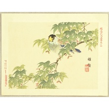 Kono Bairei: Flowers and Birds Picture Album by Bairei No.4. - Artelino