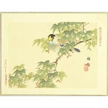 Kono Bairei: Flowers and Birds Picture Album by Bairei No.4. - Artelino
