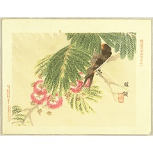 Kono Bairei: Flowers and Birds Picture Album by Bairei No.6 - Artelino