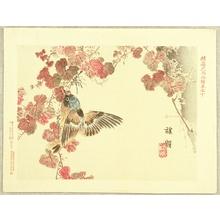 Kono Bairei: Flowers and Birds Picture Album by Bairei No.10 - Artelino