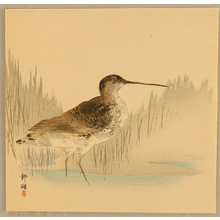 静湖: Water Bird - Artelino