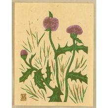 Kawakami Sumio: Thistle - Artelino