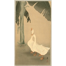 小原古邨: Geese and Banana Tree - Artelino