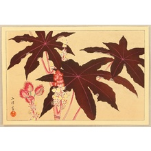 Aoyama Masaharu: Botanical Print - Artelino